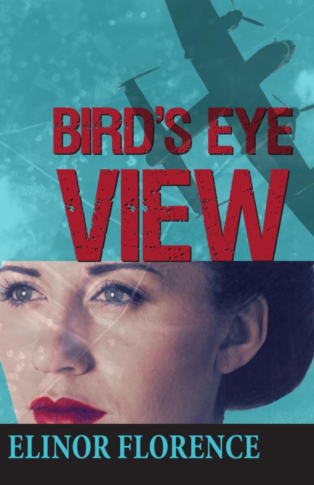 Bird's Eye View-1940s Fiction novel